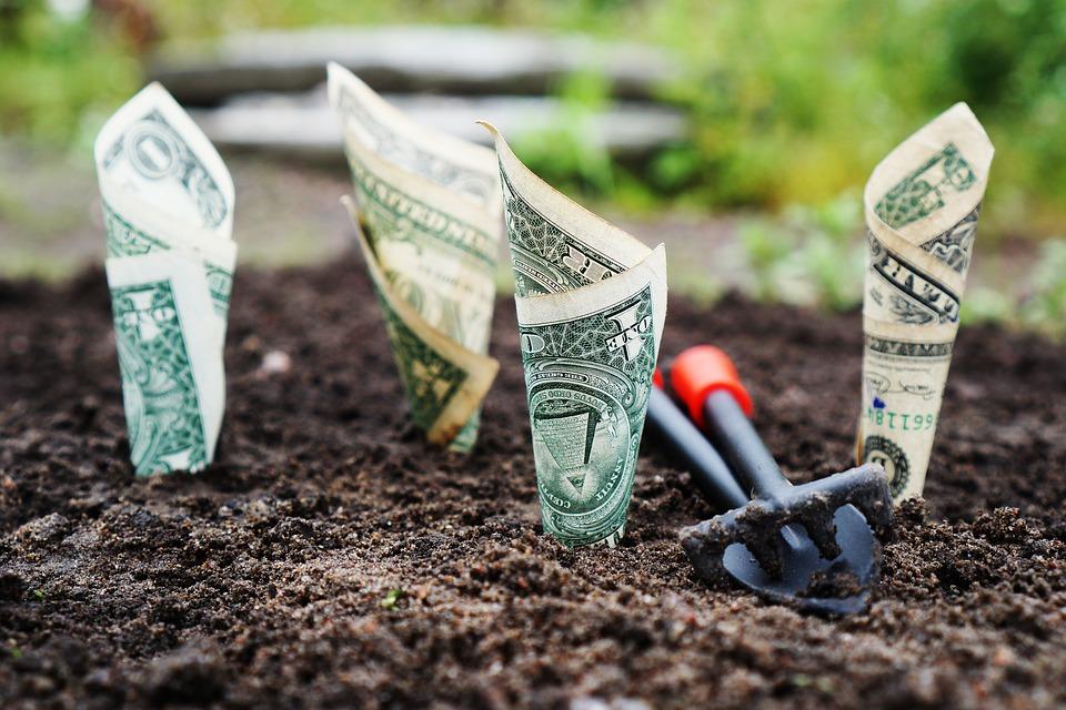 turnover profit cashflow